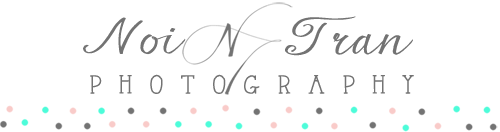 Georgia Wedding Photographer + Destination Wedding Photography logo
